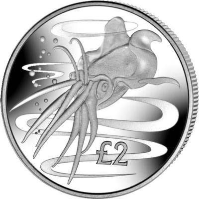 Южная Джорджия и Сандвичевые острова 2 фунта 2017 год «Голубой гигантский кальмар» (реверс).jpg