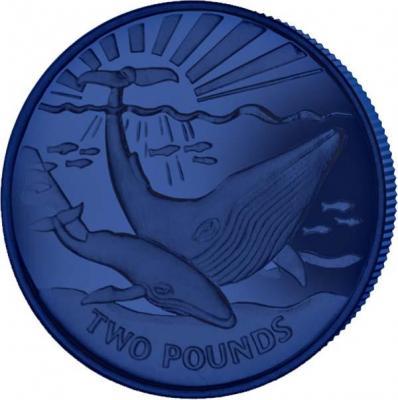 Южная Джорджия и Сандвичевые острова 2 фунта 2017 год «Синий кит» титан (реверс).jpg