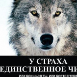 VolkodaV