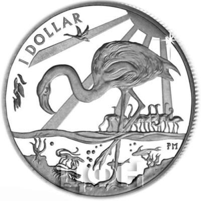Британские Виргинские острова 1 доллар 2015 «Фламинго» (реверс).jpg