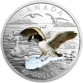 kanada_20_dollarov_2018_kanadskii_gus_(1).jpg.d8a6e3fe75af5dcdadc73aa3848a9952.jpg