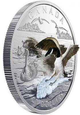 kanada_20_dollarov_2018_kanadskii_gus_(2).thumb.jpg.6fa513748994a536f0e6d8e3d4682a44.jpg
