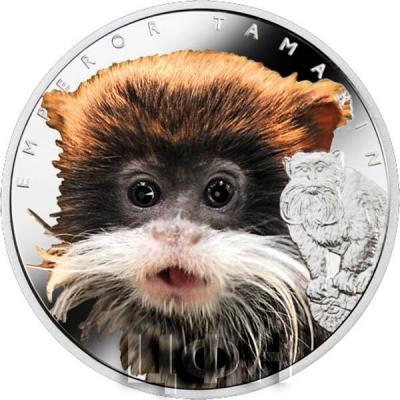 Ниуэ 1 доллар 2015 год «Императорский тамарин» (реверс).jpg