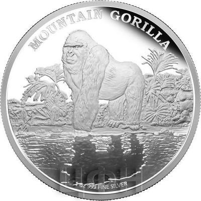 Ниуэ 2 доллара 2015 год «Горная горилла» (реверс).jpg