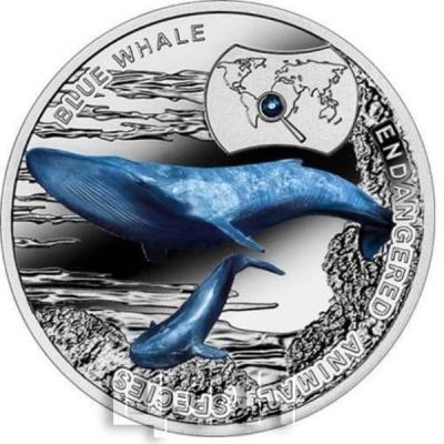 Ниуэ 1 доллар  2015 год. «Синий Ки» (реверс).jpg