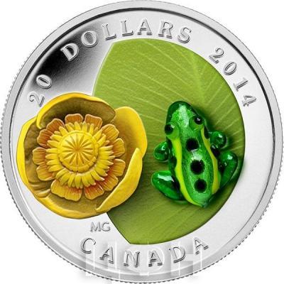 Канада 20 долларов 2014 года «Водяная лилия и леопардовая лягушка».jpg