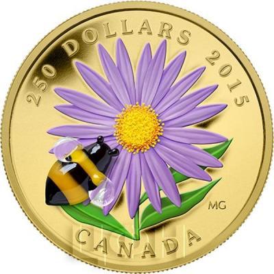 Канада 250 долларов 2015 года «Астра и пчела».jpg