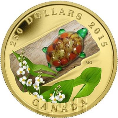 Канада 250 долларов 2015 года «Стрелолист широколистный и черепаха».jpg