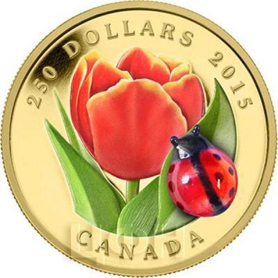 Канада 250 долларов 2015 года «Тюльпан и божья коровка».jpg