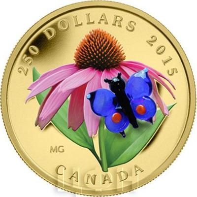 Канада 250 долларов 2015 года «Эхинацея и бабочка».jpg