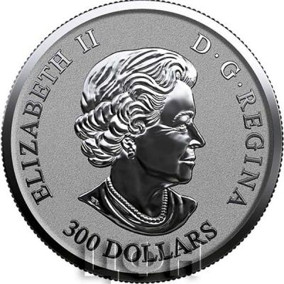Канада 300 долларов Елизавета II  (аверс).jpg
