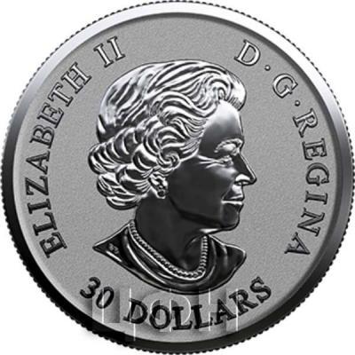 Канада 30 долларов Елизавета II  (аверс).jpg