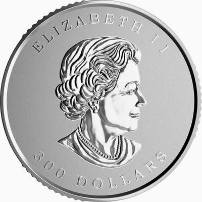 Канада 300 долларов (аверс).jpg