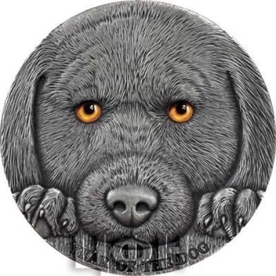 Камерун 3000 франков КФА 2017 «Год Собаки» (реверс).jpg
