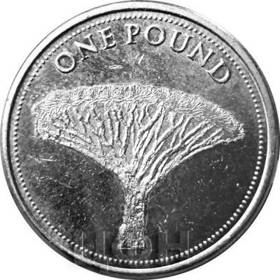 Гибралтар 1 фунт 2015 год «Драконовоедерево»  (реверс).jpg