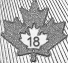 kanada_5_dollarov_2018_klenovyi_list_invest__(3).jpg.229d807355eb91f3be1bb7caab15cf1e.jpg