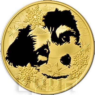 Лаос 50000 кип 2018 год Собаки (аверс).jpg