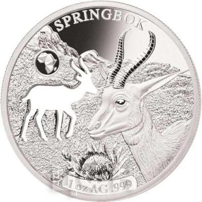 Джибути 250 франков 2018 SPRINGBOK (реверс).jpg