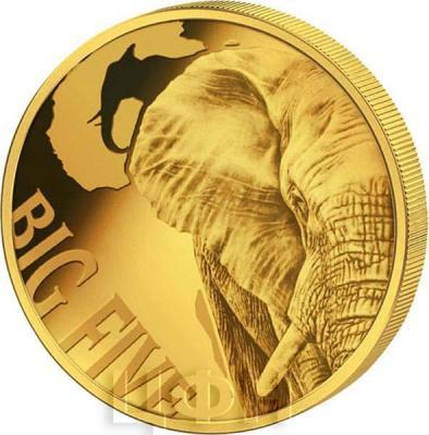 Камерун 10000 франков 2018 год «Большая пятёрка» (реверс).jpg