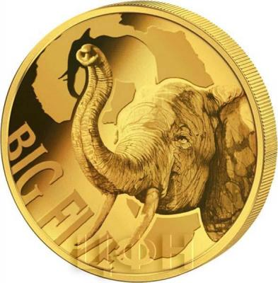 Камерун 100 франков 2018 год «Большая пятёрка» (реверс).jpg