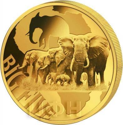 Камерун 2000 франков 2018 год «Большая пятёрка» (реверс).jpg