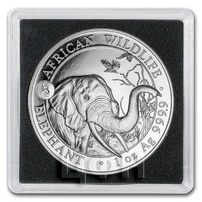 Сомали 100 франков КФА 2018 год «Слон» (реверс).jpg