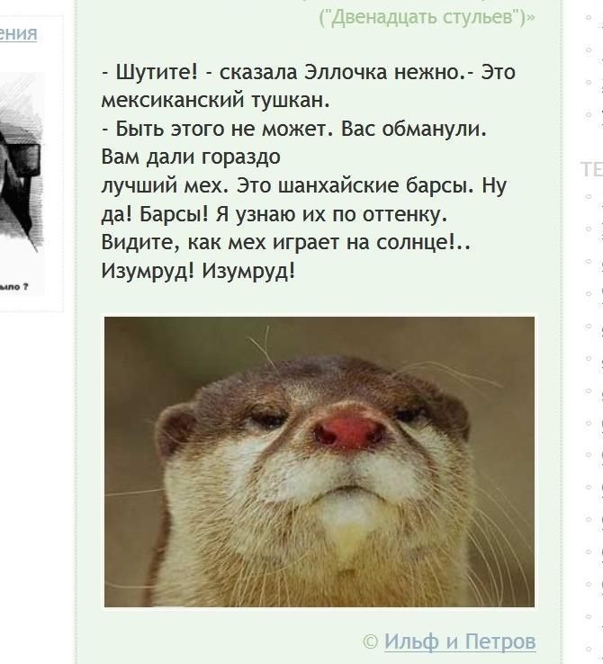 http://coins.su/forum/uploads/2018/04/03/tushkan.jpg.81e5a19305ad97a3fb3143eb5b0deafb.jpg