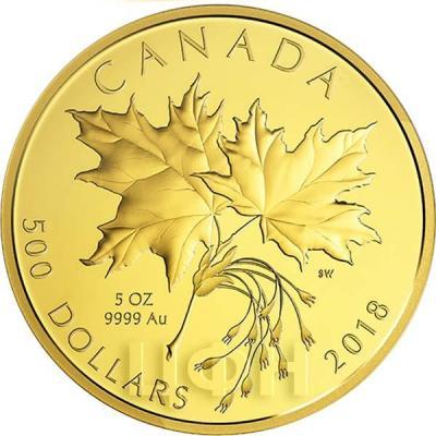 Канада 500 долларов 2018 «Кленовые листья» (реверс).jpg