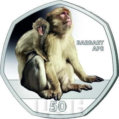 Гибралтар 50 пенсов 2018 год «Обезьяны» (реверс).jpg