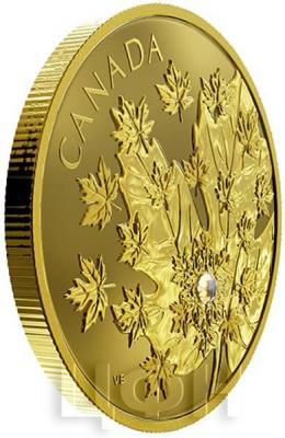 Канада 250 долларов 2018 «Кленовый лист» (реверс).jpg