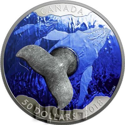 Канада 50 долларов 2018 «Кит» (реверс).jpg