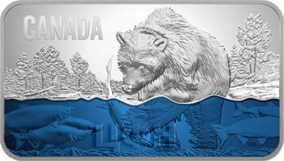 Канада 25 долларов 2018 год Нерест лосося (реверс).jpg
