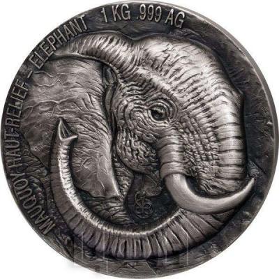 Кот-д'Ивуар 10000 франков 2019  «Слон» (реверс).jpg