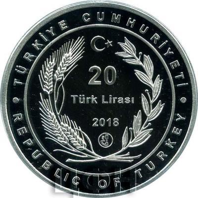 2018, 20 лир Турции (аверс).jpg