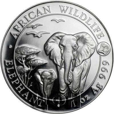 Сомали 100 шиллингов 2015 год «Слон» (реверс).jpg