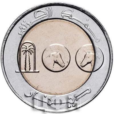 «100 динаров Алжир» (1).jpg