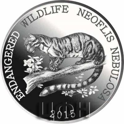 «ENDANGERED WILDLIFE NEOFLIS NEBULOSA» (1).jpg