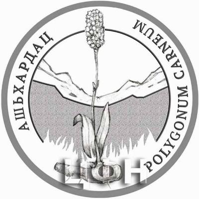 2020 год «Флора Абхазии» Polygonum carneum C. Koch – Горец мясо-красный – Ашьхардац.jpg