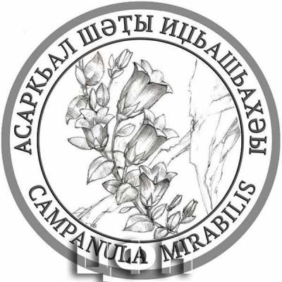 2020 год «Флора Абхазии» Campanula mirabilis Albov –  Колокольчик удивительный – Асаркьал шәҭы иџьашьахәы.jpg